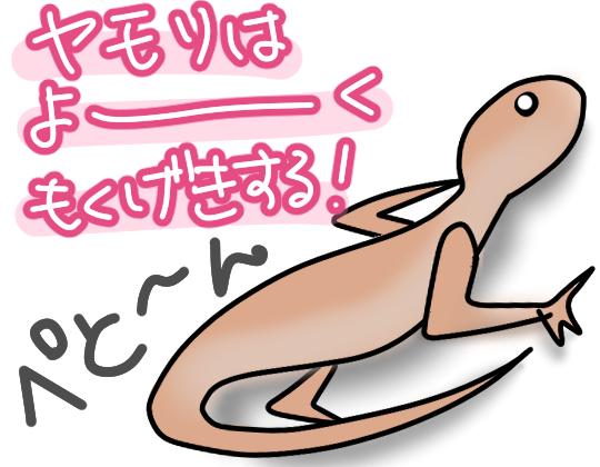 沖縄のヤモリ